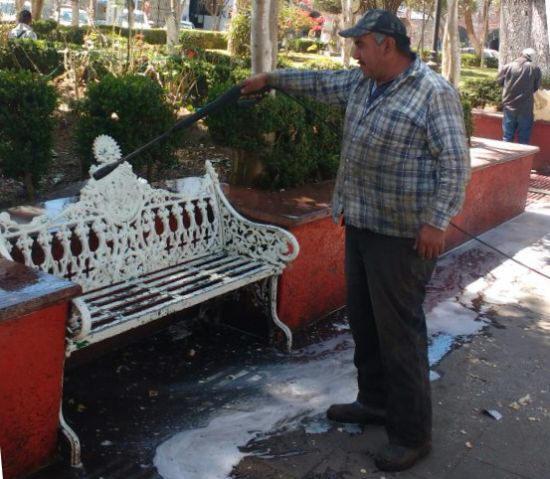 Mantenimiento urbano de tulancingo contin a con trabajos for El jardin urbano